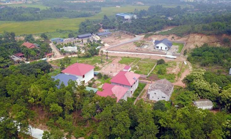 Phó Thủ tướng 'lệnh' xử lý dứt điểm việc xây biệt thự trên đất rừng ở Vĩnh Phúc ảnh 2