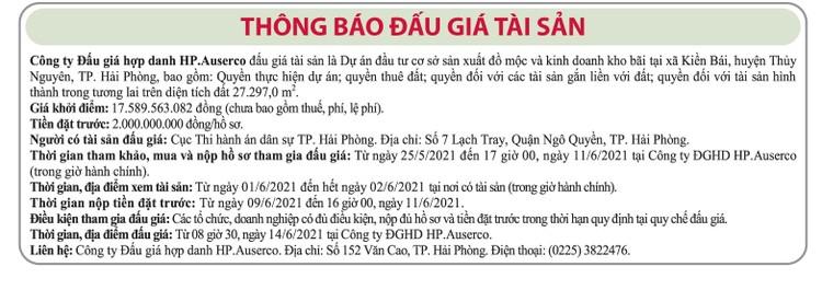 Ngày 14/6/2021, đấu giá quyền sử dụng đất tại huyện Thủy Nguyên, thành phố Hải Phòng ảnh 1