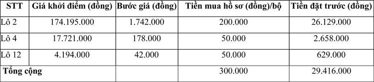 Ngày 10/6/2021, đấu giá hệ thống máy bóc vỏ lụa hạt điều tại tỉnh Ninh Thuận ảnh 2