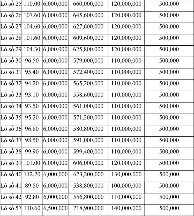 Ngày 21/6/2021, đấu giá quyền sử dụng đất tại thành phố Sầm Sơn, tỉnh Thanh Hóa ảnh 2