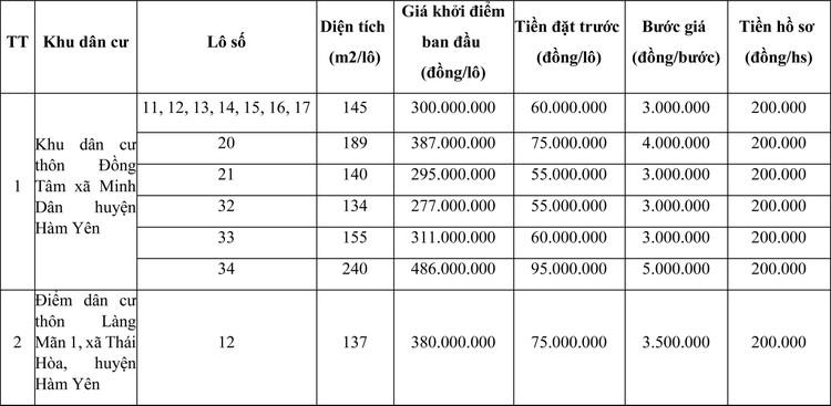 Ngày 25/6/2021, đấu giá quyền sử dụng đất tại huyện Hàm Yên, tỉnh Tuyên Quang ảnh 1