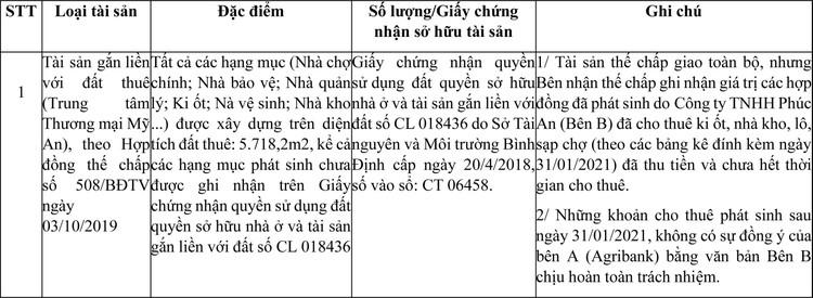 Ngày 18/6/2021, đấu giá quyền sử dụng đất tại huyện Tây Sơn, tỉnh Bình Định ảnh 1