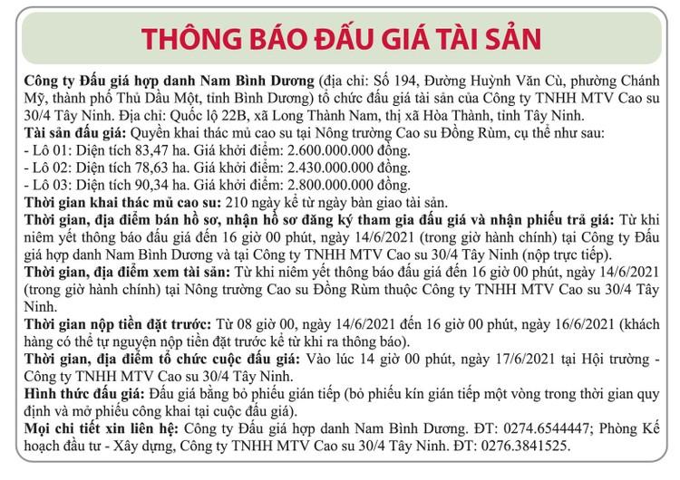 Ngày 17/6/2021, đấu giá quyền khai thác mủ cao su tại tỉnh Tây Ninh ảnh 1
