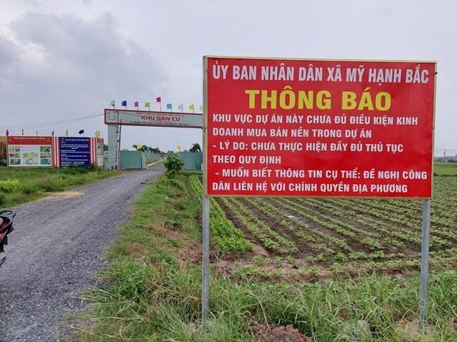 Rộ dự án bất động sản ngang nhiên 'bán lúa non' ở Long An ảnh 2