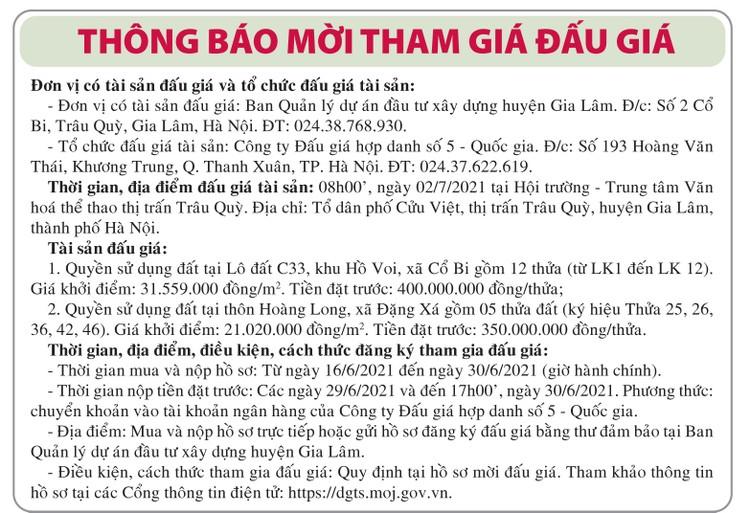 Ngày 2/7/2021, đấu giá quyền sử dụng đất tại huyện Gia Lâm, Hà Nội ảnh 1