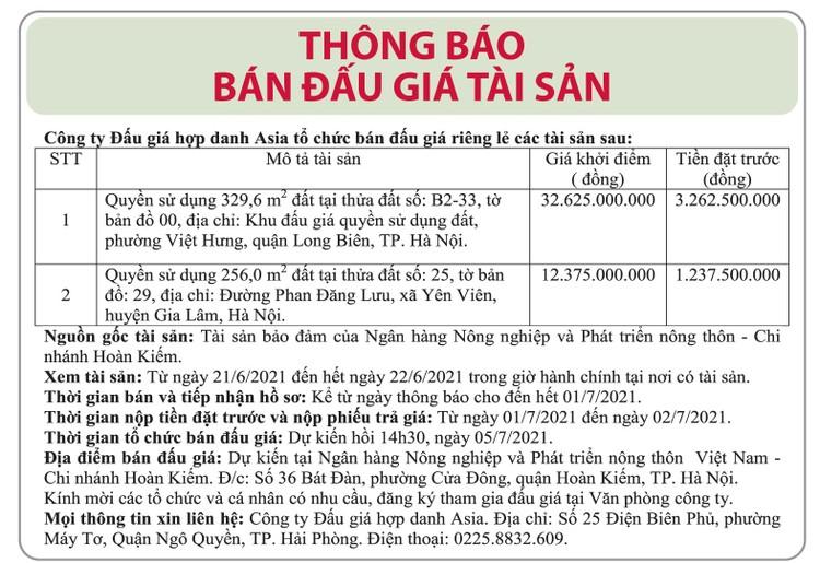 Ngày 5/7/2021, đấu giá quyền sử dụng đất tại huyện Gia Lâm và quận Long Biên, Hà Nội ảnh 1