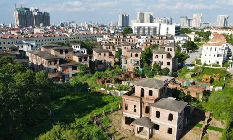 Cận cảnh hàng loạt khu biệt thự bỏ hoang nhiều năm ở ngoại thành Hà Nội ảnh 10