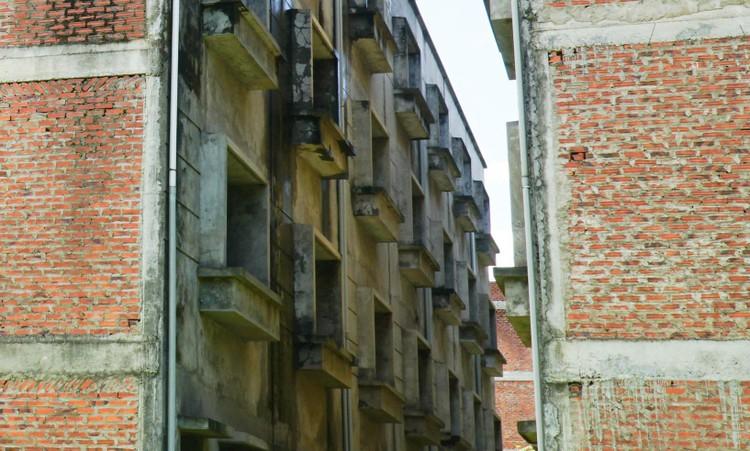 Mục sở thị hàng trăm căn biệt thự bỏ hoang, rêu mốc ở một huyện tại Hà Nội ảnh 3