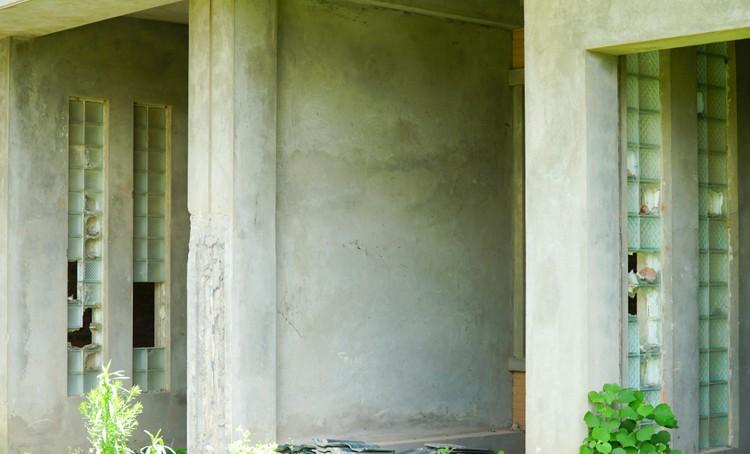 Mục sở thị hàng trăm căn biệt thự bỏ hoang, rêu mốc ở một huyện tại Hà Nội ảnh 5