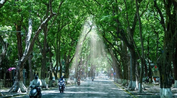 Đường phố Hà Nội thông thoáng, chỉ số về không khí tốt ảnh 6