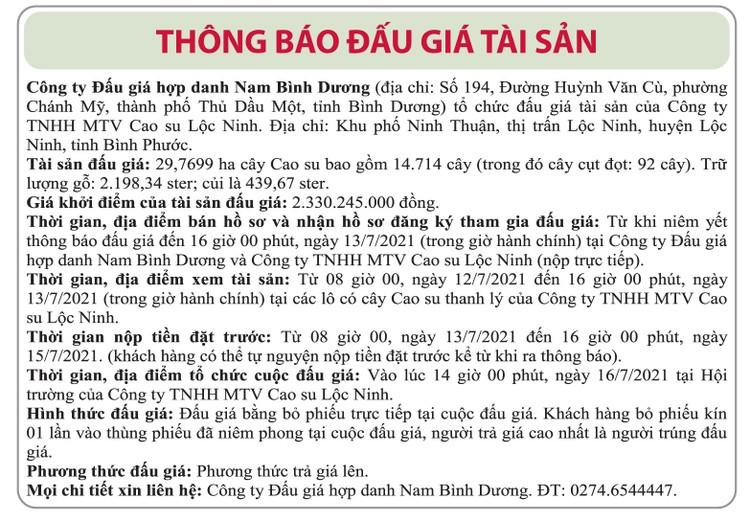Ngày 16/7/2021, đấu giá 14.714 cây cao su tại tỉnh Bình Phước ảnh 1