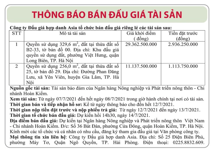 Ngày 14/7/2021, đấu giá quyền sử dụng đất tại quận Long Biên, Hà Nội ảnh 1