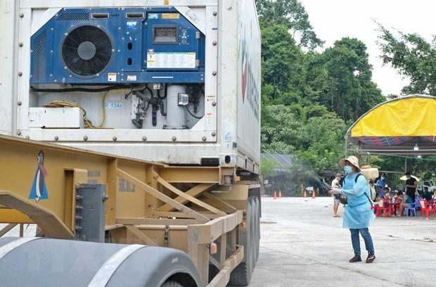Bộ Giao thông Vận tải họp khẩn với 19 tỉnh phía Nam về tổ chức vận tải ảnh 1