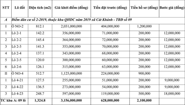 Ngày 16/7/2021, đấu giá quyền sử dụng đất tại huyện Phù Cát, tỉnh Bình Định ảnh 1