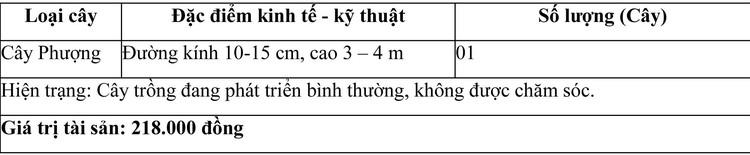 Ngày 30/7/2021, đấu giá giá trị lợi thế quyền thuê đất, công trình xây dựng tại huyện Ninh Sơn, tỉnh Ninh Thuận ảnh 6