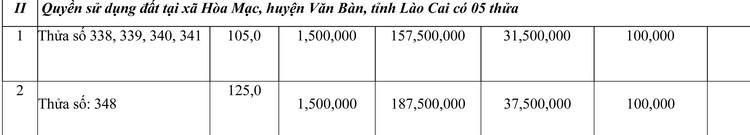 Ngày 23/7/2021, đấu giá quyền sử dụng đất tại huyện Văn Bàn, tỉnh Lào Cai ảnh 2