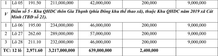 Ngày 30/7/2021, đấu giá quyền sử dụng đất tại huyện Phù Cát, tỉnh Bình Định ảnh 2