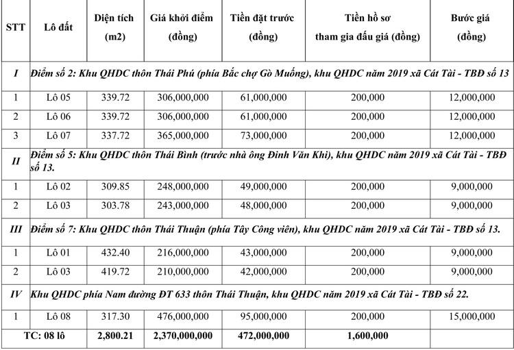 Ngày 30/7/2021, đấu giá quyền sử dụng đất tại huyện Phù Cát, tỉnh Bình Định ảnh 1