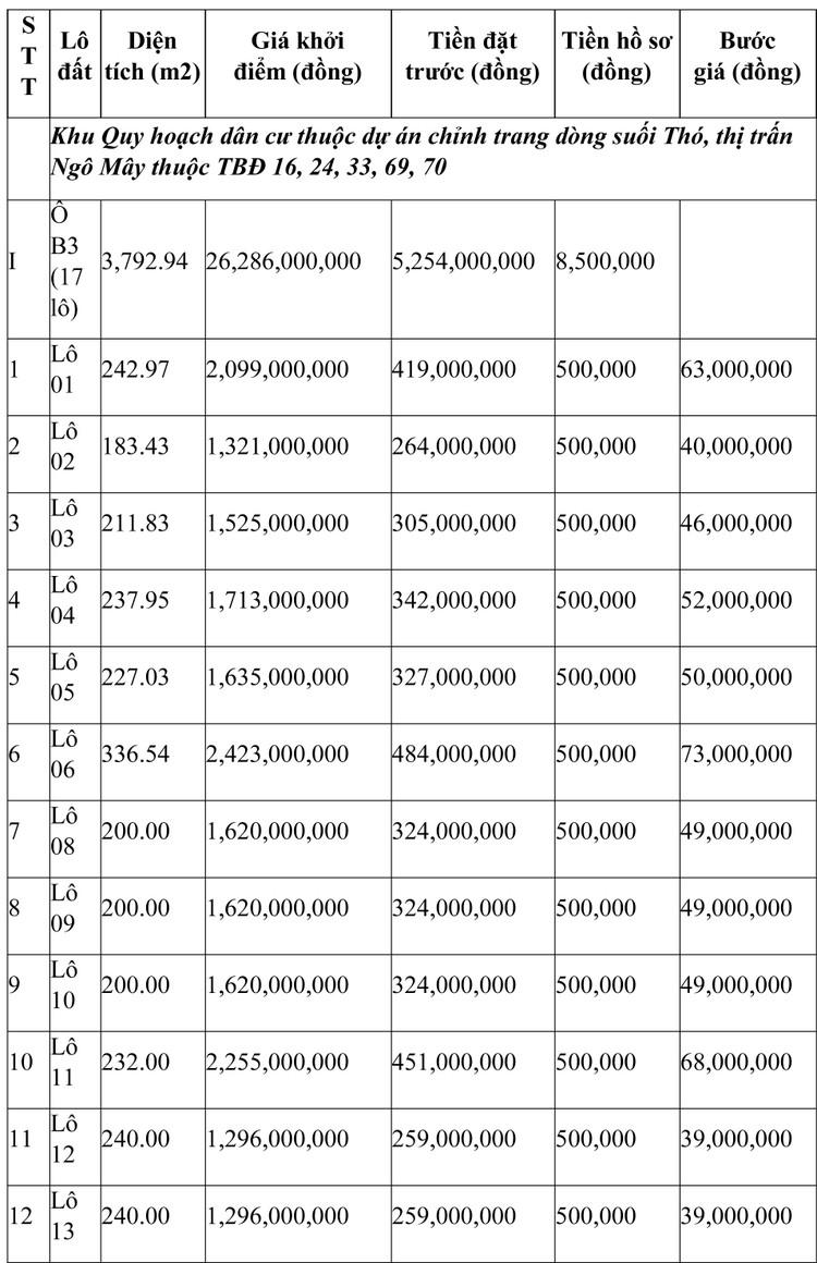 Ngày 24/7/2021, đấu giá quyền sử dụng đất tại huyện Phù Cát, tỉnh Bình Định ảnh 1