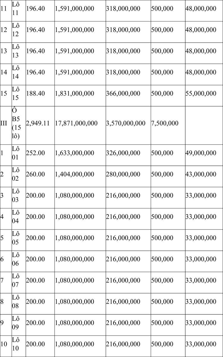 Ngày 24/7/2021, đấu giá quyền sử dụng đất tại huyện Phù Cát, tỉnh Bình Định ảnh 3