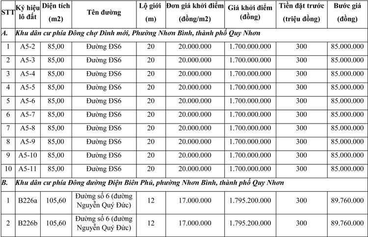 Ngày 23/7/2021, đấu giá quyền sử dụng đất tại thành phố Quy Nhơn, tỉnh Bình Định ảnh 1