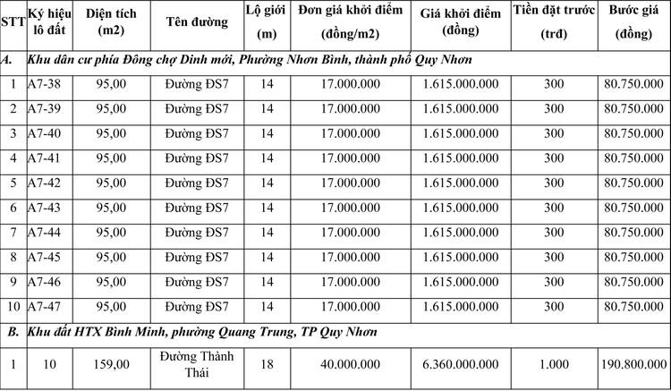 Ngày 13/8/2021, đấu giá quyền sử dụng đất tại thành phố Quy Nhơn, tỉnh Bình Định ảnh 1