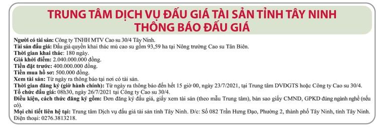 Ngày 26/7/2021, đấu giá quyền khai thác mủ cao su tại tỉnh Tây Ninh ảnh 1