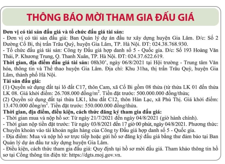 Ngày 6/8/2021, đấu giá quyền sử dụng đất tại huyện Gia Lâm, Hà Nội ảnh 1