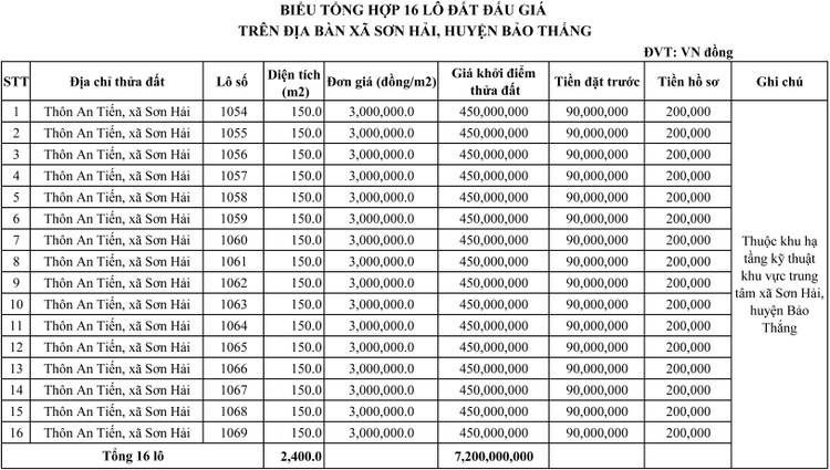 Ngày 5/8/2021, đấu giá quyền sử dụng đất tại huyện Bảo Thắng, tỉnh Lào Cai ảnh 2