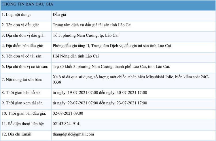 Ngày 2/8/2021, đấu giá xe ô tô Mitsubishi Jolie tại tỉnh Lào Cai ảnh 1