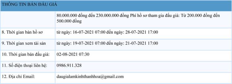Ngày 2/8/2021, đấu giá quyền sử dụng 22 lô đất tại huyện Cẩm Thủy, tỉnh Thanh Hóa ảnh 2