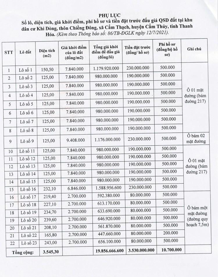 Ngày 2/8/2021, đấu giá quyền sử dụng 22 lô đất tại huyện Cẩm Thủy, tỉnh Thanh Hóa ảnh 6