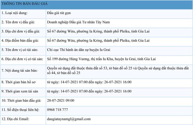 Ngày 28/7/2021, đấu giá quyền sử dụng đất tại huyện Ia Grai, tỉnh Gia Lai ảnh 1