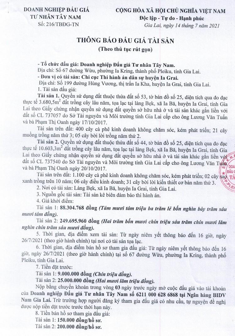 Ngày 28/7/2021, đấu giá quyền sử dụng đất tại huyện Ia Grai, tỉnh Gia Lai ảnh 2