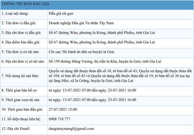 Ngày 27/7/2021, đấu giá quyền sử dụng đất tại huyện Ia Grai, tỉnh Gia Lai ảnh 1