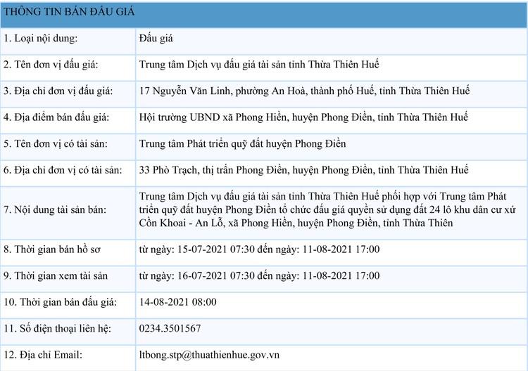 Ngày 14/8/2021, đấu giá quyền sử dụng 24 lô đất tại huyện Phong Điền, tỉnh Thừa Thiên Huế ảnh 1