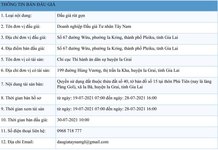 Ngày 30/7/2021, đấu giá quyền sử dụng đất tại huyện Ia Grai, tỉnh Gia Lai ảnh 1