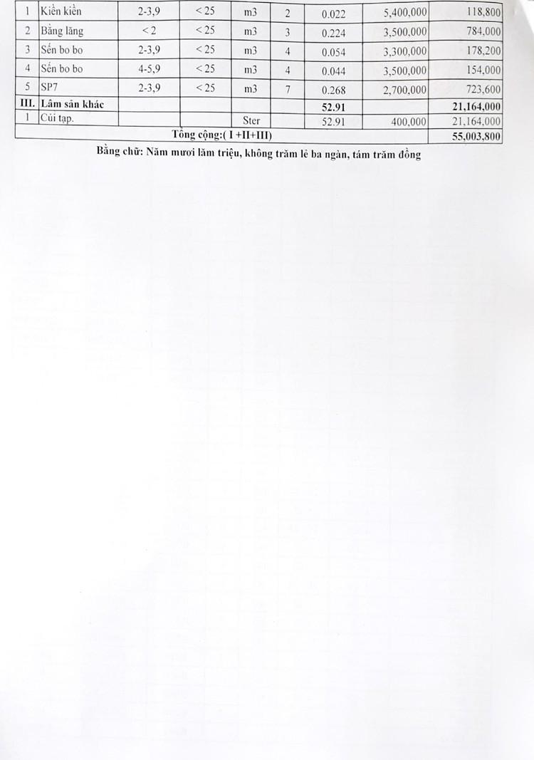 Ngày 5/8/2021, đấu giá gỗ các loại và phương tiện vi phạm hành chính tại tỉnh Gia Lai ảnh 4