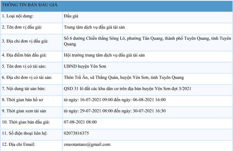 Ngày 7/8/2021, đấu giá quyền sử dụng 31 lô đất tại huyện Yên Sơn, tỉnh Tuyên Quang ảnh 1