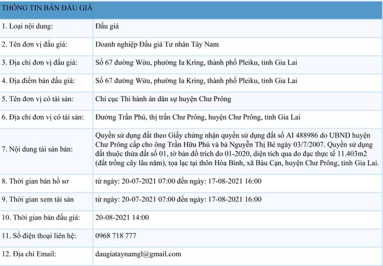 Ngày 20/8/2021, đấu giá quyền sử dụng đất tại huyện Chư Prông, tỉnh Gia Lai ảnh 1