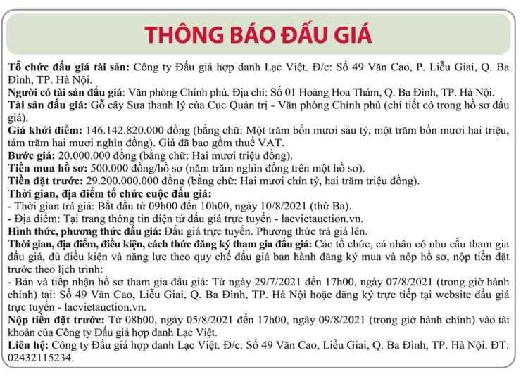 Ngày 10/8/2021, đấu giá gỗ cây Sưa thanh lý tại Hà Nội ảnh 1