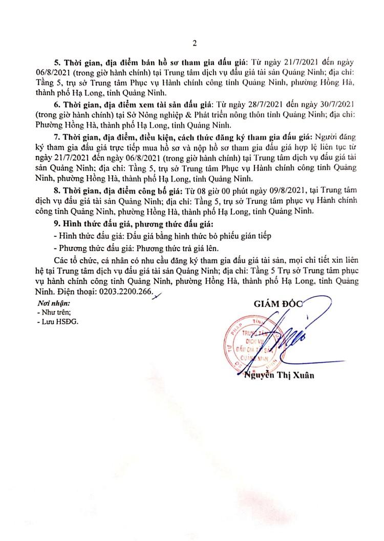 Ngày 9/8/2021, đấu giá xe ô tô MAZDA tại tỉnh Quảng Ninh ảnh 3