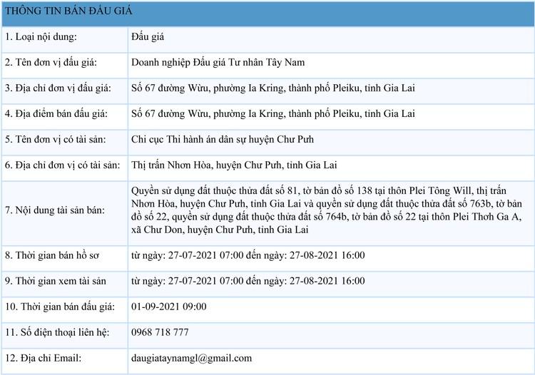 Ngày 1/9/2021, đấu giá quyền sử dụng đất tại huyện Chư Pưh, tỉnh Gia Lai ảnh 1