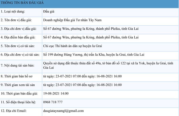 Ngày 19/8/2021, đấu giá quyền sử dụng đất tại huyện Ia Grai, tỉnh Gia Lai ảnh 1
