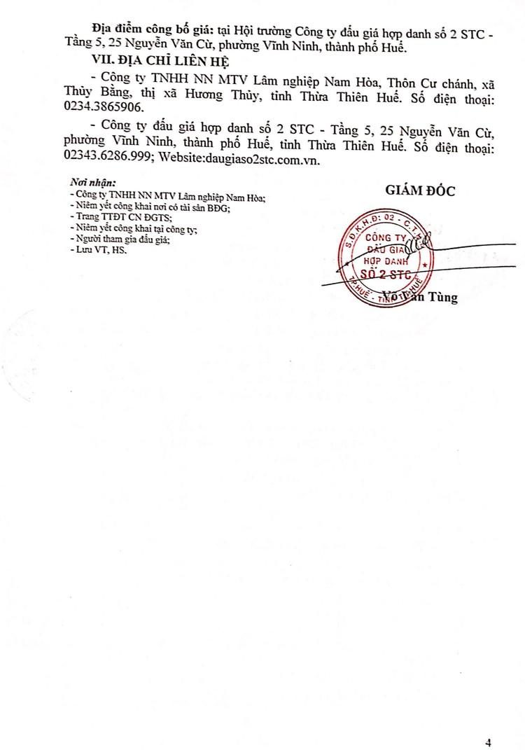 Ngày 12/8/2021, đấu giá lô gỗ rừng tại tỉnh Thừa Thiên Huế ảnh 5