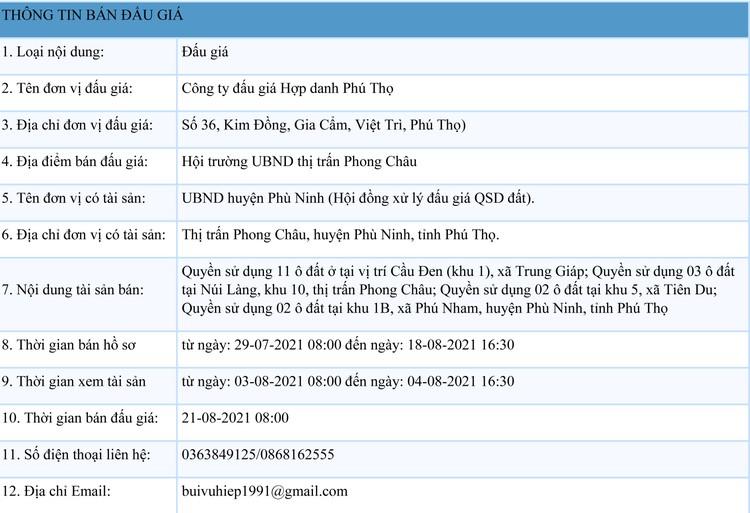 Ngày 21/8/2021, đấu giá quyền sử dụng 18 lô đất tại huyện Phù Ninh, tỉnh Phú Thọ ảnh 1