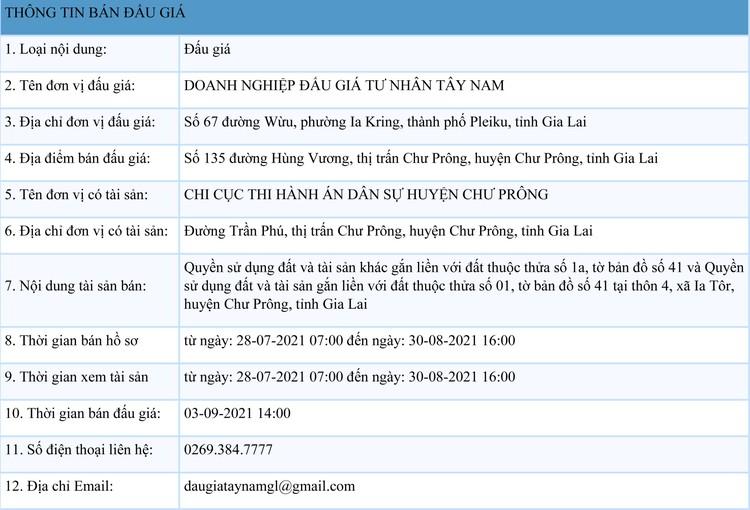 Ngày 3/9/2021, đấu giá quyền sử dụng 2 thửa đất tại huyện Chư Prông, tỉnh Gia Lai ảnh 1