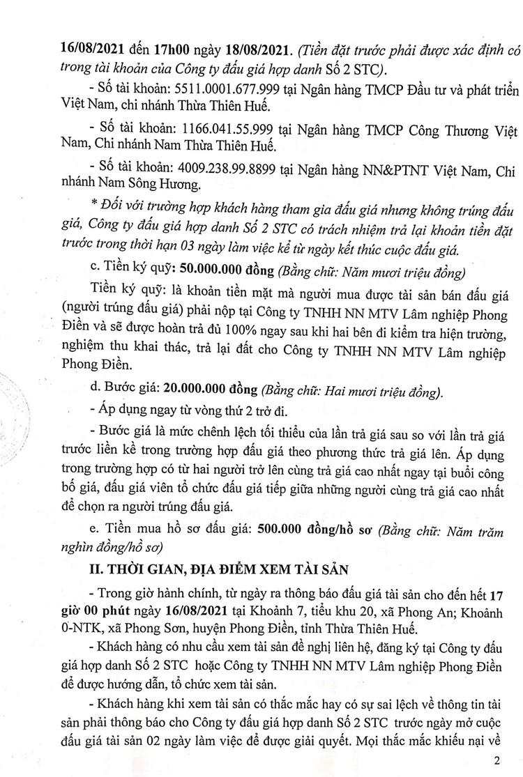 Ngày 19/8/2021, đấu giá khai thác 12ha gỗ rừng trồng sản xuất tại tỉnh Thừa Thiên Huế ảnh 3