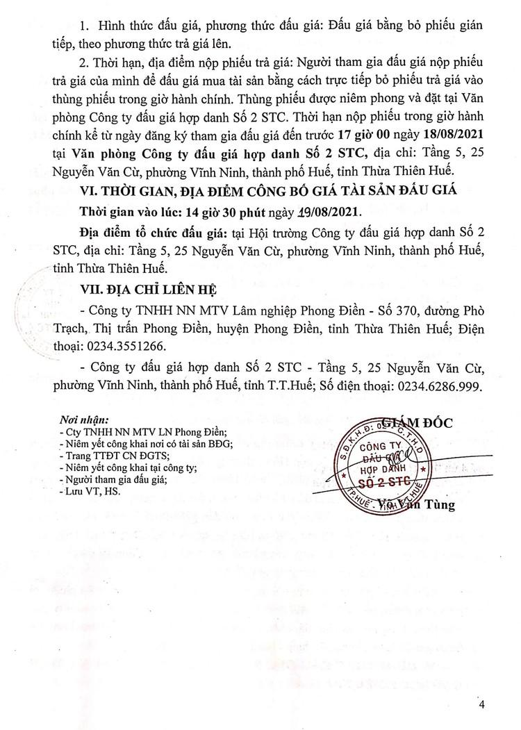 Ngày 19/8/2021, đấu giá khai thác 12ha gỗ rừng trồng sản xuất tại tỉnh Thừa Thiên Huế ảnh 5