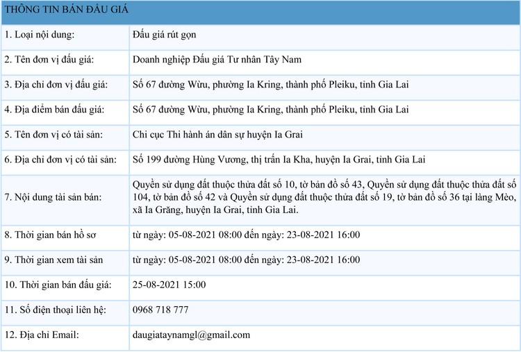 Ngày 25/8/2021, đấu giá quyền sử dụng đất tại huyện Ia Grai, tỉnh Gia Lai ảnh 1